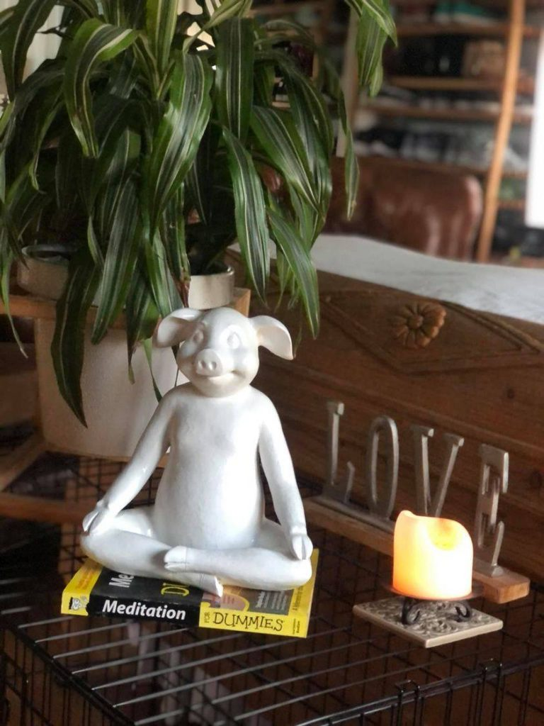 """Little pig statue doing yoga, on a """"Yoga for Dummies"""" book, next to a lit candle and a """"Love"""" sign."""